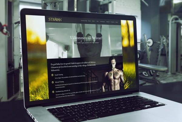 stravan-web-1